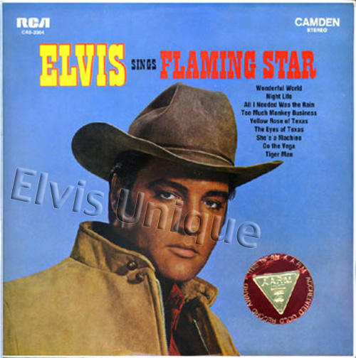 Elvis Sings Flaming Star Image