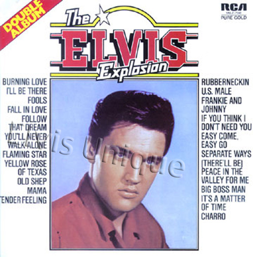 The Elvis Explosion Image