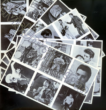 Elvis In Hollywood Cards Image