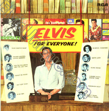 Elvis For Everyone Image
