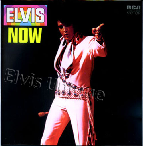Elvis Now Image