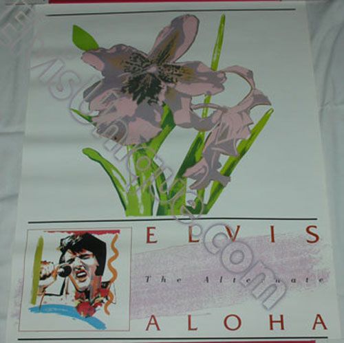 Rare RCA Alternate Aloha Store Display Poster Image