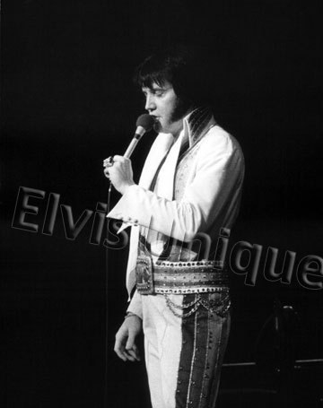 Beautiful Elvis In Concert 1976 8x10 Photograph Image